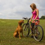 Keeping Your Pets Healthy