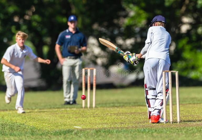 Online Cricket Games