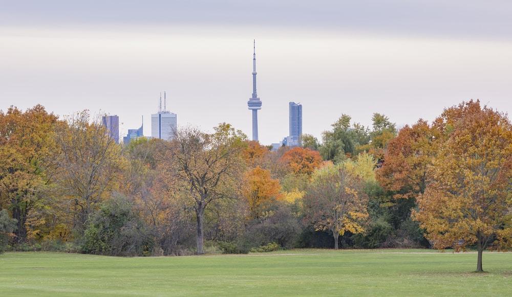 trip Toronto fall