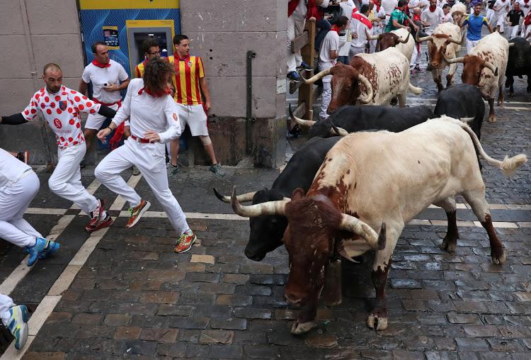 Dangerous Sports Bull Running