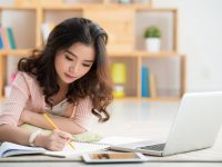 Reliable Essay Writing