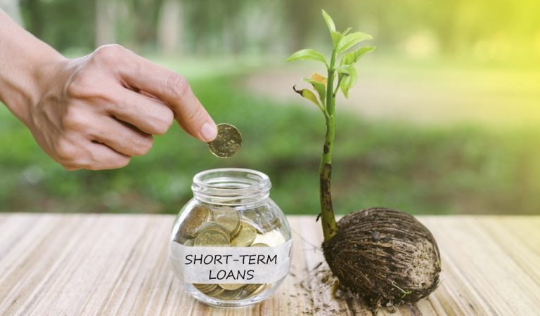 Short Term Loans You Should Take Out in 2019 to Tide Over