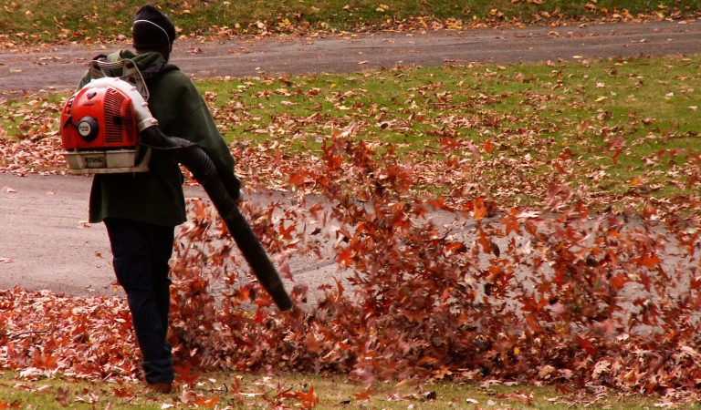 Leaf Blowers: Why Do You Look For