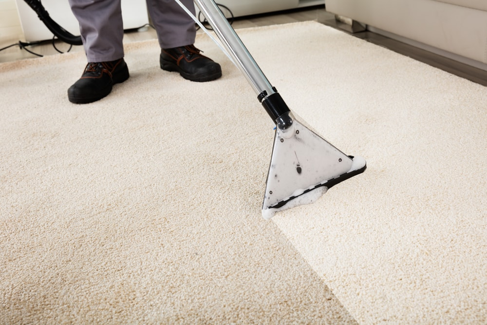 Rubbing Carpet Cleaning