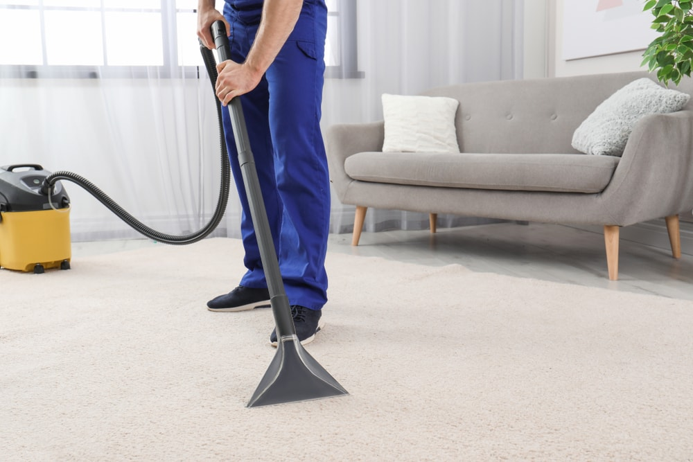 Stains Carpet Cleaning