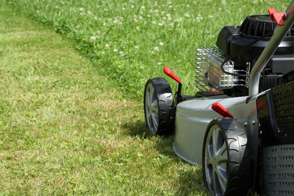 Few Guidelines Push Mowers