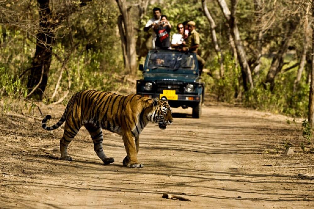 Borivali National Park