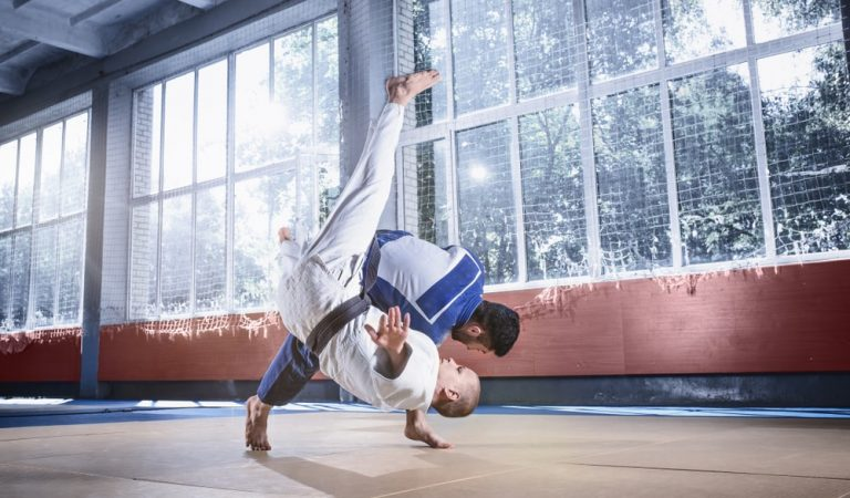 Boost the Productivity of your Martial Arts Club with Software