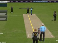 Online Cricket Game