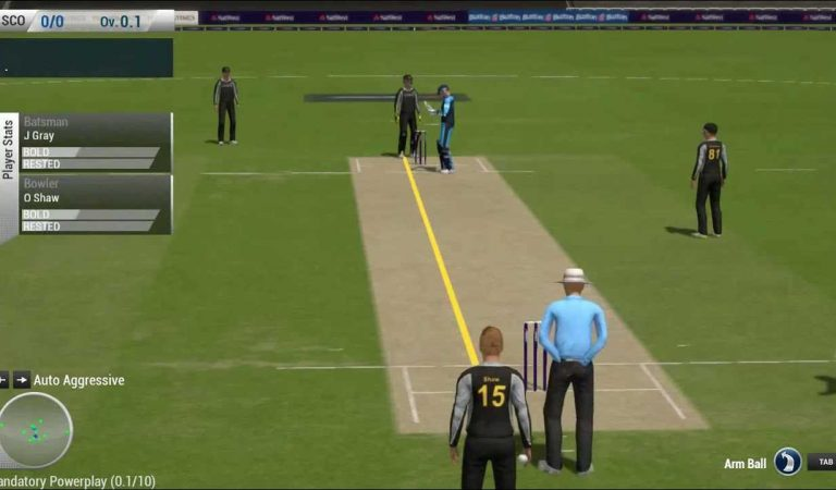 Online Cricket Games – Why Every Cricket Fan Should Try Them Once?
