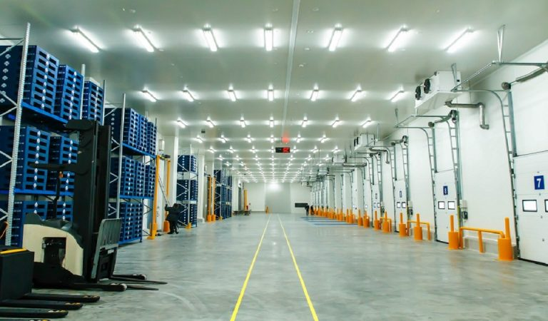 Why Should You Purchase Cold Storage From Freezer Room Manufacturers?