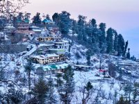 near shimla travel