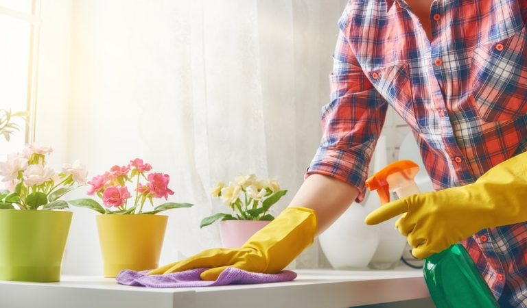 Do-It-Yourself (DIY) Green Solutions to Make Your House Clean and Bright