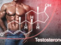 Testosterone Cycle and Steroids Guide