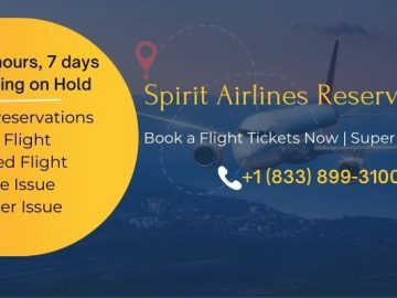 Spirit-Airlines-Reservations-(800x400)