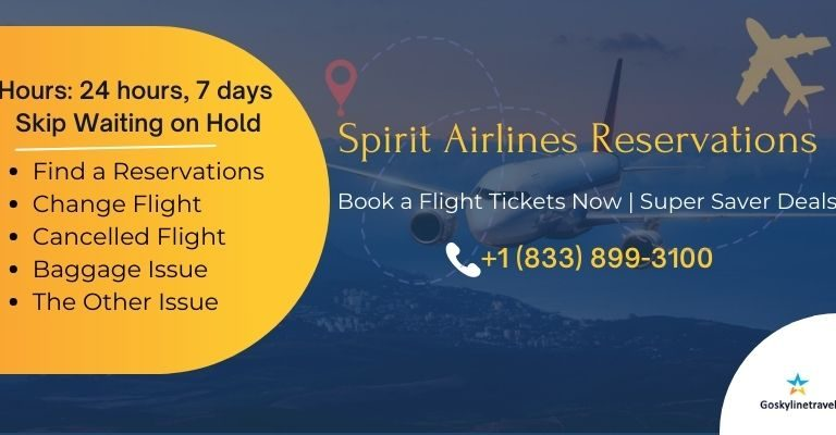 Book your Spirit Airlines reservations with Goskylinetravel