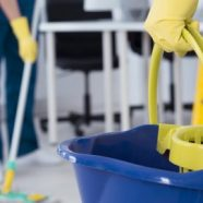 Profile picture of Monroy SF Cleaning